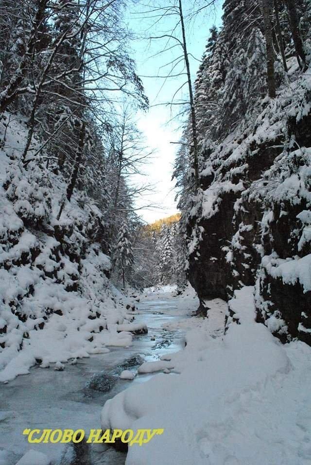 У Карпатах повністю замерз водоспад: казкові фото - фото 293284
