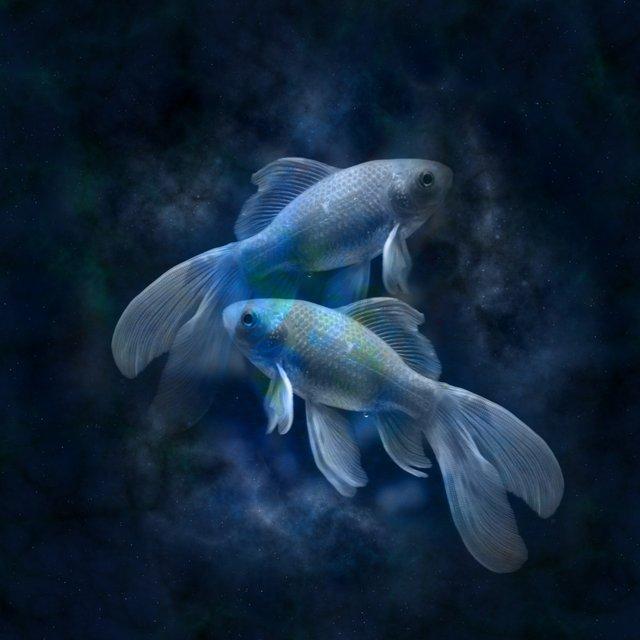 Гороскоп для Риб - фото 293357