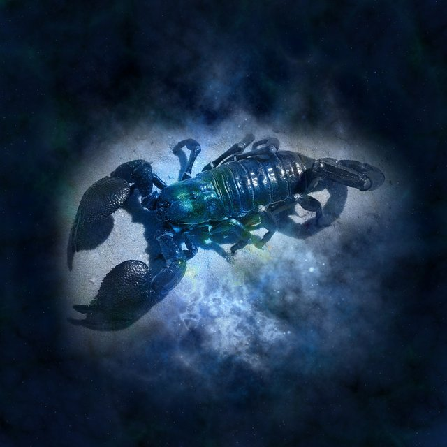 Гороскоп для Скорпіонів - фото 293363