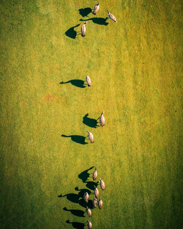 Пейзажі світу з висоти пташиного польоту: ефектні фото - фото 293376