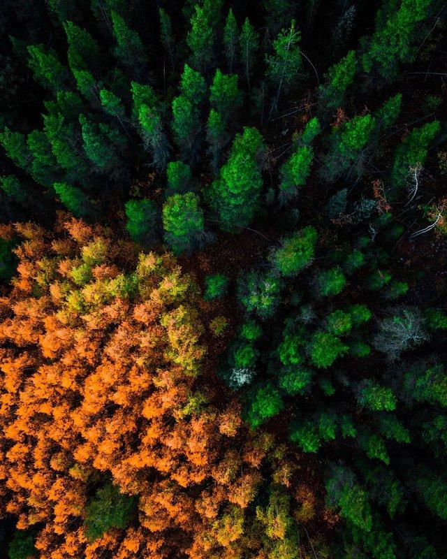 Пейзажі світу з висоти пташиного польоту: ефектні фото - фото 293387