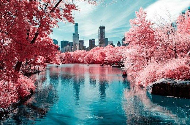 Італієць показує світ у нетипових кольорах: вражаючі фото - фото 293448