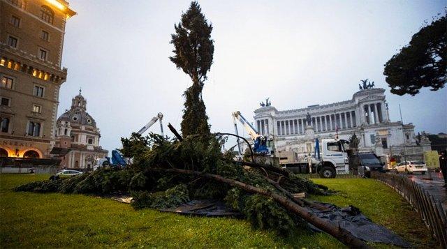 Ялинка в Римі 2019  - фото 293465