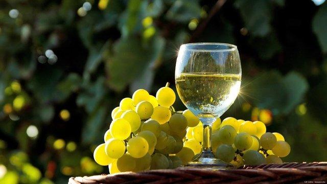 Вино з білого винограду  - фото 293692