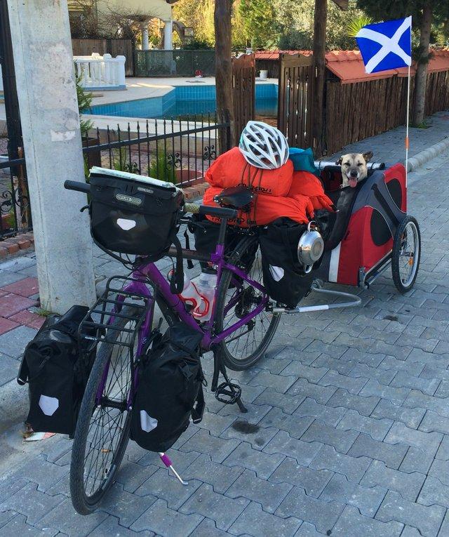 Ця британка мандрує світом на велосипеді, щоб рятувати собак - фото 293846