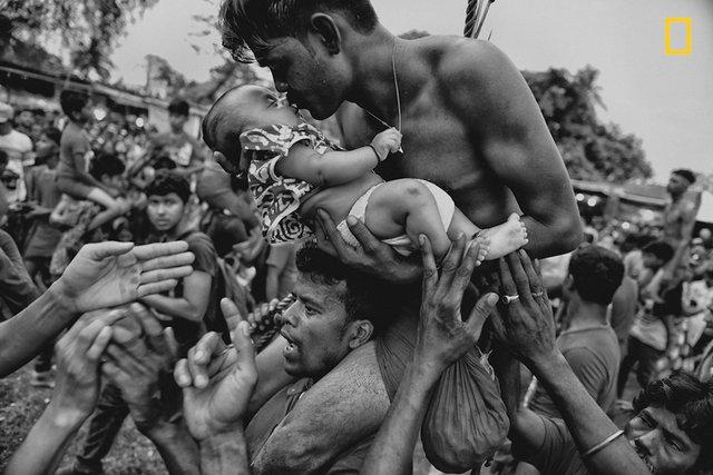 Названі переможці фотоконкурсу National Geographic Photo Contest 2018 - фото 294189