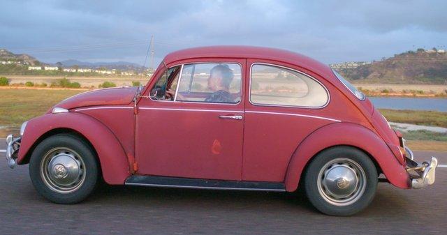 Volkswagen Beetle - фото 295277