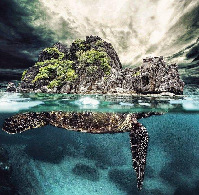 Неймовірний світ у роботах Джастіна Майна: ефектні фото - фото 295475
