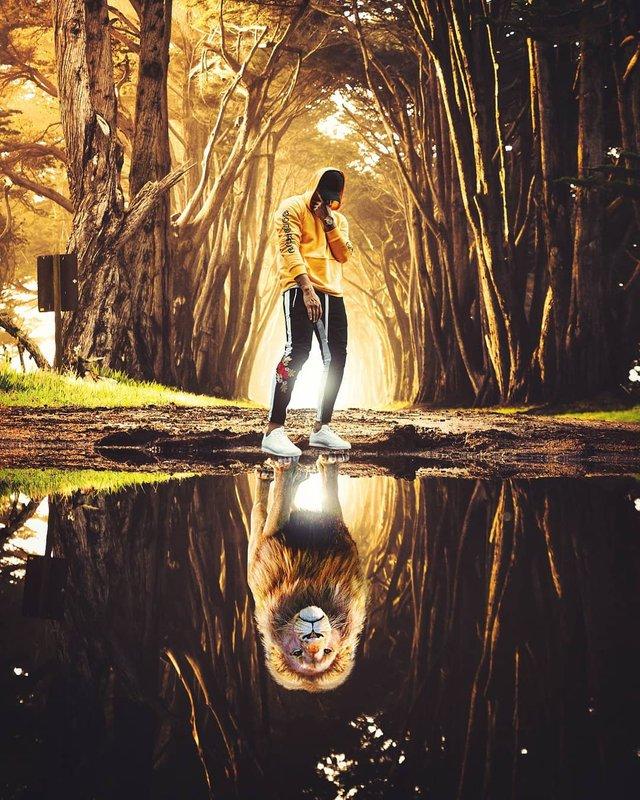 Неймовірний світ у роботах Джастіна Майна: ефектні фото - фото 295478