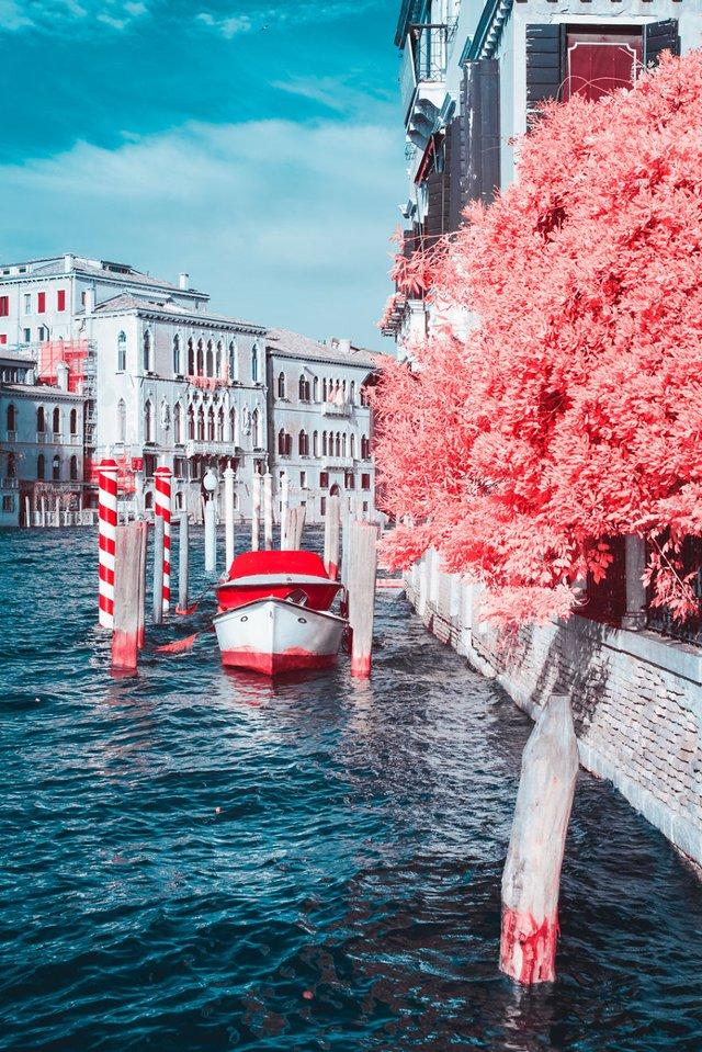 Наче в казці: італійський фотограф показує світ у незвичайних кольорах - фото 295525