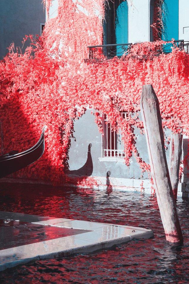 Наче в казці: італійський фотограф показує світ у незвичайних кольорах - фото 295532