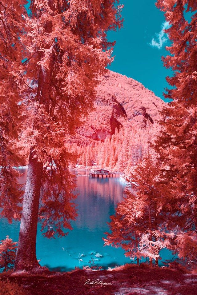 Наче в казці: італійський фотограф показує світ у незвичайних кольорах - фото 295534