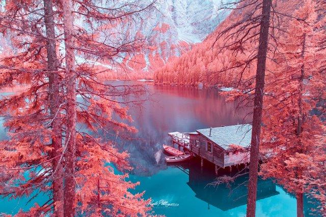 Наче в казці: італійський фотограф показує світ у незвичайних кольорах - фото 295535