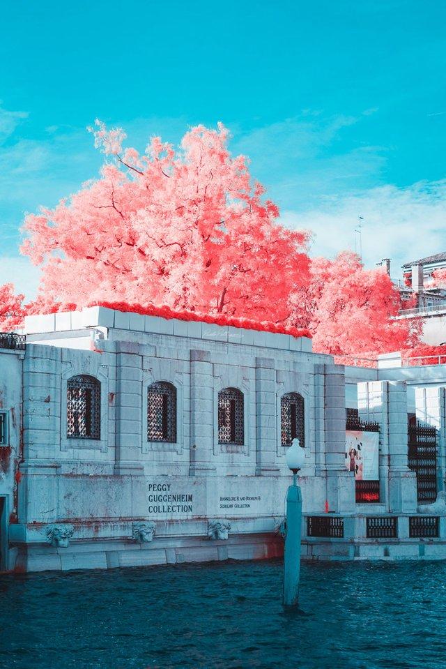 Наче в казці: італійський фотограф показує світ у незвичайних кольорах - фото 295537