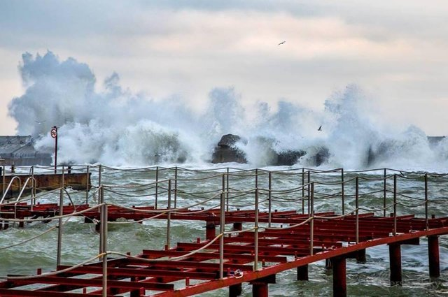 Зимовий шторм в Одесі: вражаючі фото - фото 295585