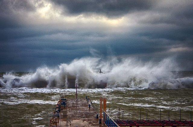 Зимовий шторм в Одесі: вражаючі фото - фото 295586