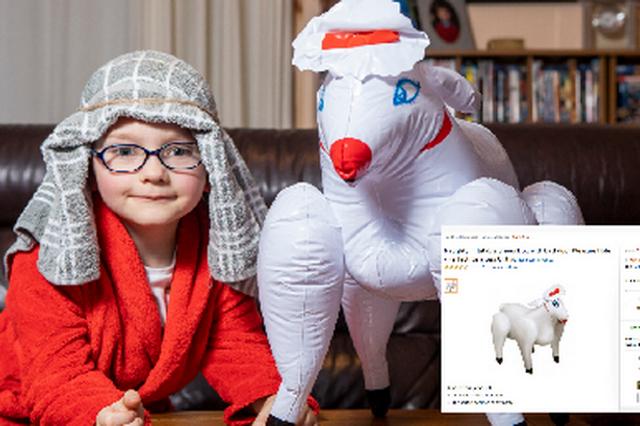 З секс-шопу: турботлива матуся купила своєму синочку надувну вівцю - фото 295776