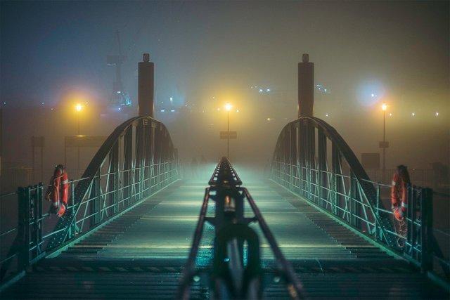 Ранковий Гамбург крізь туман: захопливі фото - фото 295979