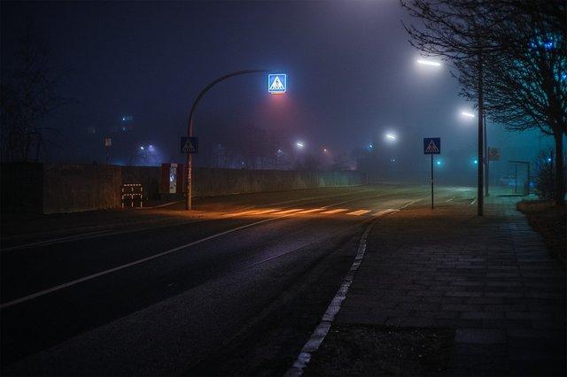 Ранковий Гамбург крізь туман: захопливі фото - фото 295991