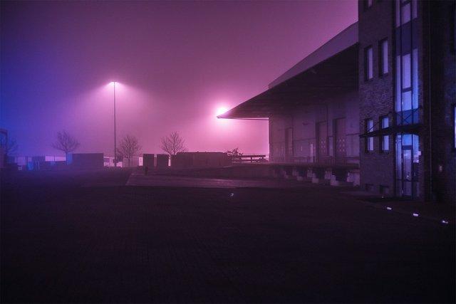 Ранковий Гамбург крізь туман: захопливі фото - фото 295993
