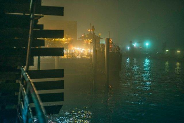 Ранковий Гамбург крізь туман: захопливі фото - фото 295997