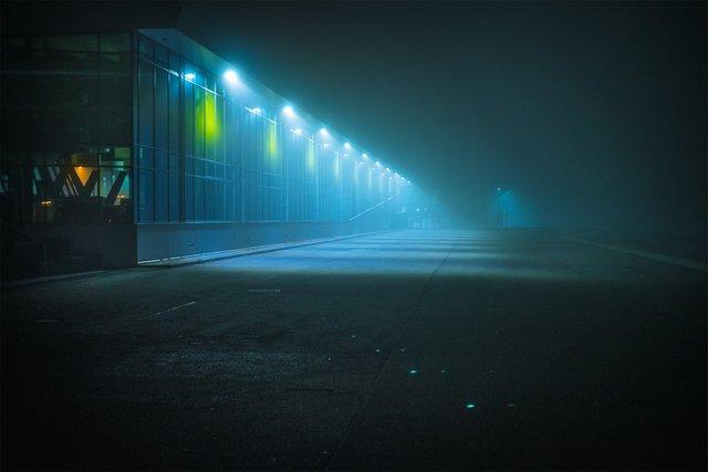 Ранковий Гамбург крізь туман: захопливі фото - фото 295998