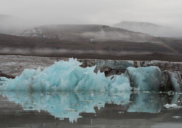 Дика природа Арктики у вражаючих фото мандрівника - фото 296097