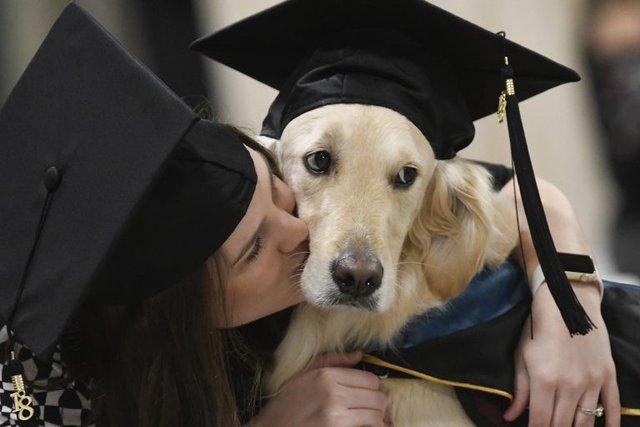 У США собака-поводир став магістром - фото 296465