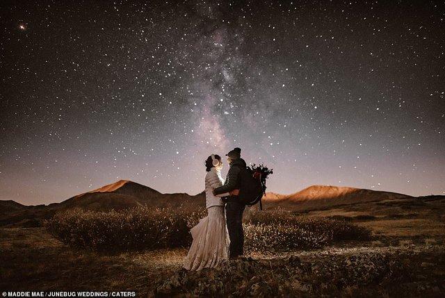 Експерти вибрали найкращі весільні фото року - фото 296945