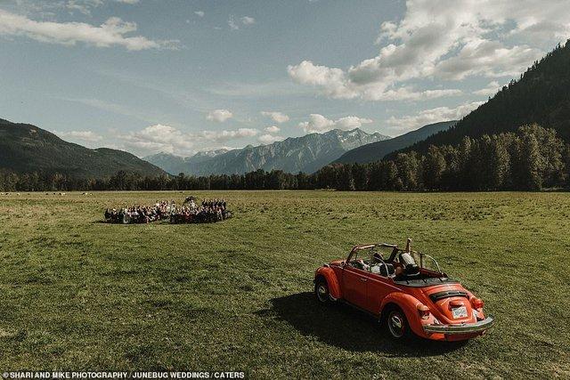Експерти вибрали найкращі весільні фото року - фото 296953
