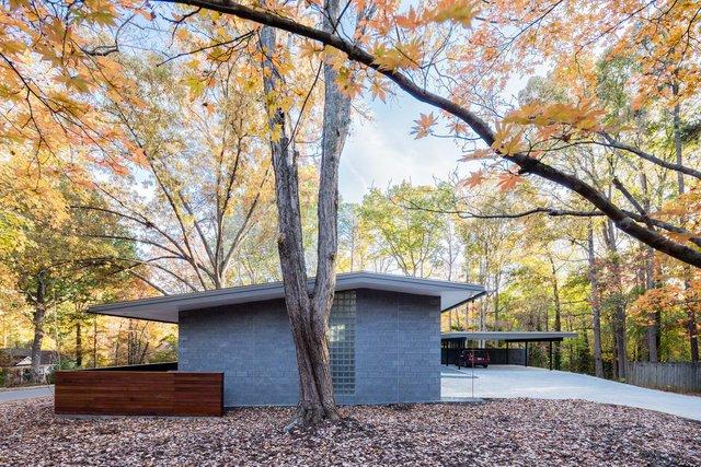 Ідеальний дім для інтровертів посеред лісу: яскраві фото - фото 297230