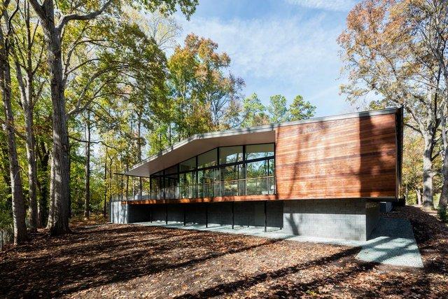 Ідеальний дім для інтровертів посеред лісу: яскраві фото - фото 297233