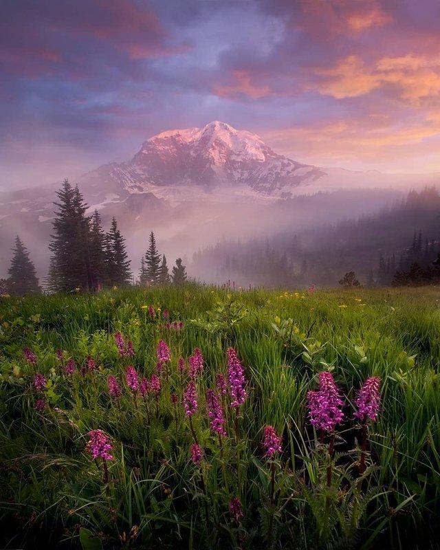 Ефектні пейзажі світу від Марка Адамуса: яскраві фото - фото 297601
