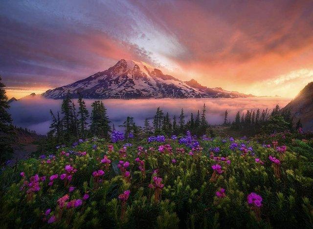 Ефектні пейзажі світу від Марка Адамуса: яскраві фото - фото 297604