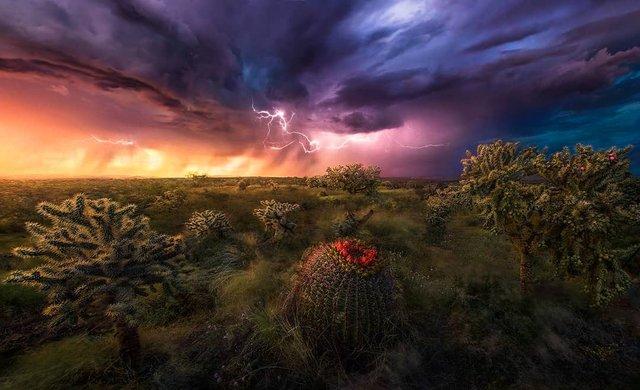 Ефектні пейзажі світу від Марка Адамуса: яскраві фото - фото 297605