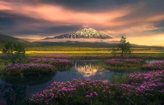 Ефектні пейзажі світу від Марка Адамуса: яскраві фото - фото 297617
