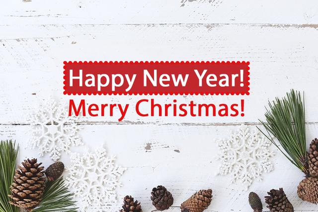 З НР і Різдвом Христовим! - фото 298017