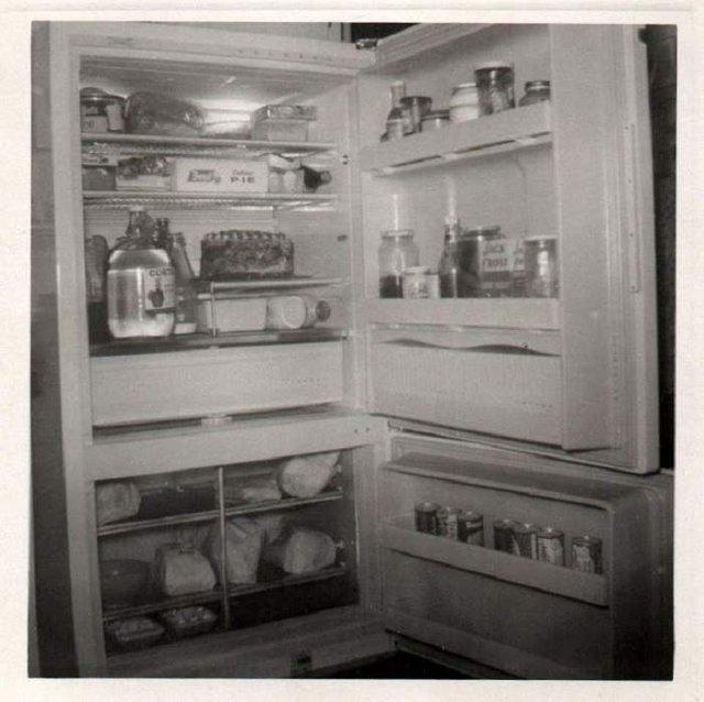 Що зберігалося в холодильниках американців у 1950-х - фото 299052
