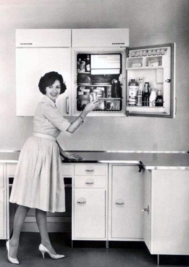Що зберігалося в холодильниках американців у 1950-х - фото 299055