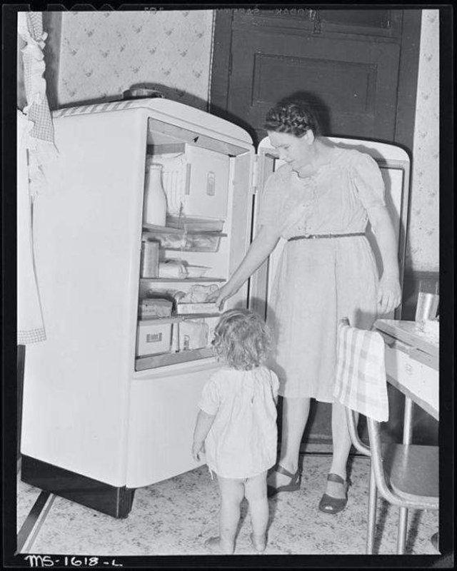 Що зберігалося в холодильниках американців у 1950-х - фото 299056