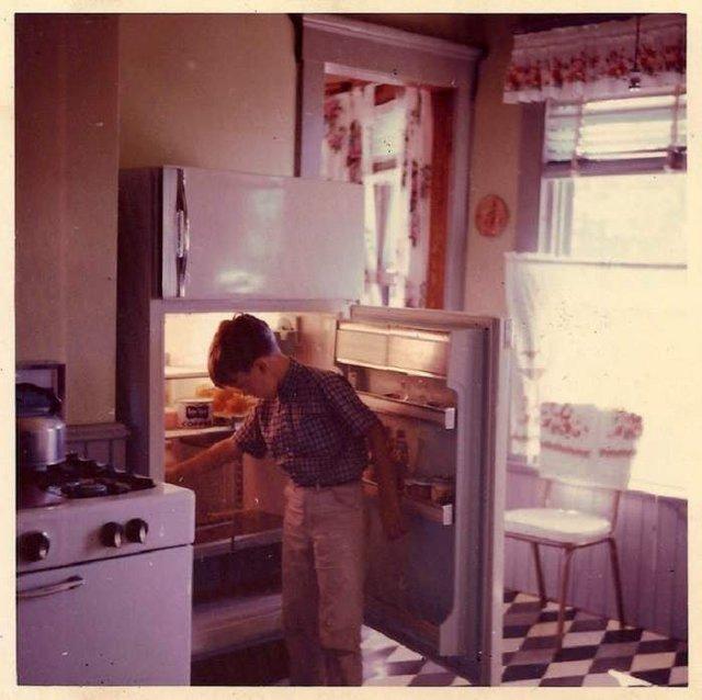 Що зберігалося в холодильниках американців у 1950-х - фото 299057