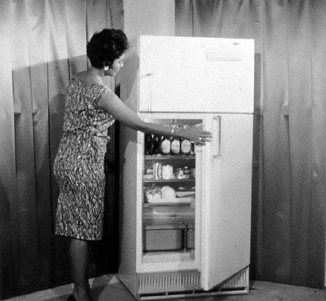 Що зберігалося в холодильниках американців у 1950-х - фото 299060