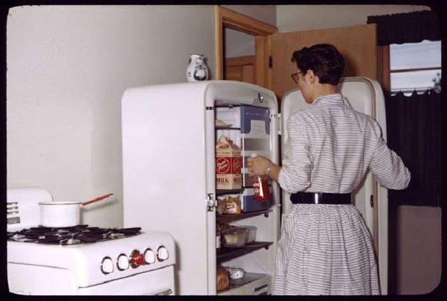 Що зберігалося в холодильниках американців у 1950-х - фото 299061