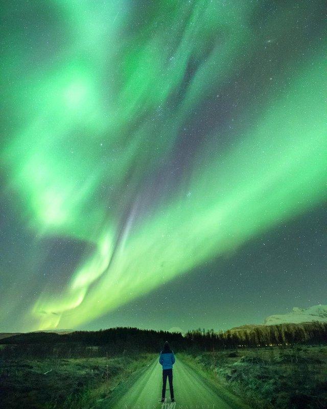 Неймовірна краса полярного сяйва: захопливі фото і відео - фото 299232