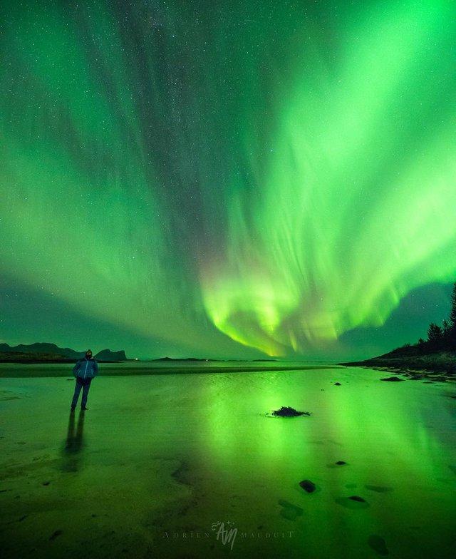 Неймовірна краса полярного сяйва: захопливі фото і відео - фото 299236