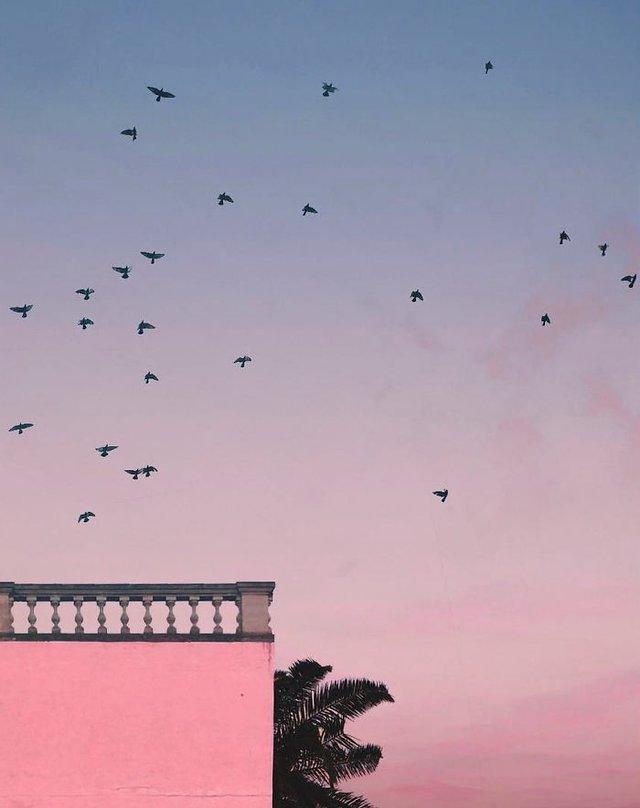 Вічне літо: мінімалістичні фото від Андріа Панкраці - фото 299589