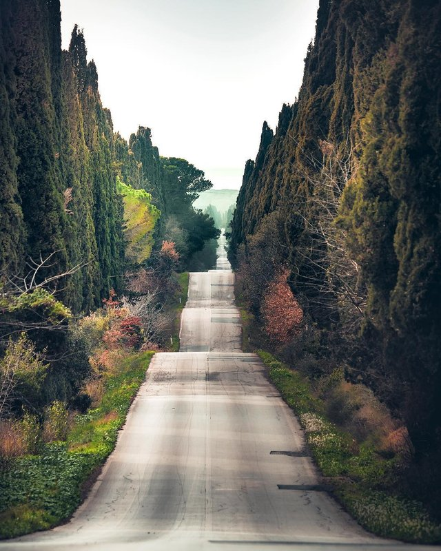 Захопливі подорожі Італією, які вражають: фото - фото 299617