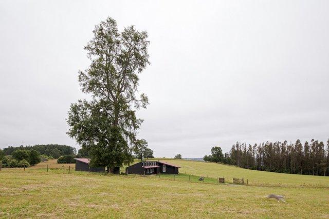 Архітектори створили чорний дім біля озера у Чилі - фото 299721