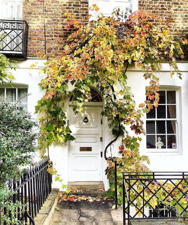 Фотограф показала найкрасивіші двері Лондона - фото 300051