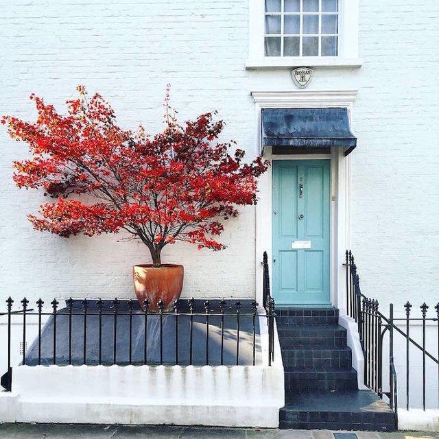 Фотограф показала найкрасивіші двері Лондона - фото 300067